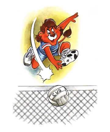 minivolley super